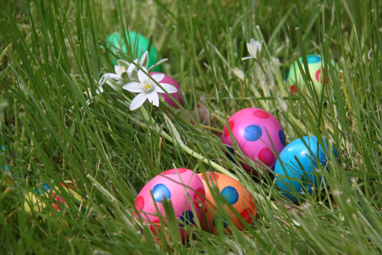 Paasbrunch - eieren zoeken
